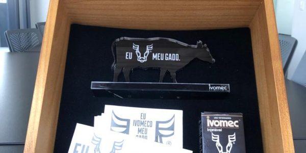 CAIXA DE MADEIRA MODELO EXPORT LUXO, ACABAMENTO MEL, REF IVOMECADO